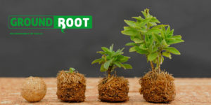 GROUNDROOT